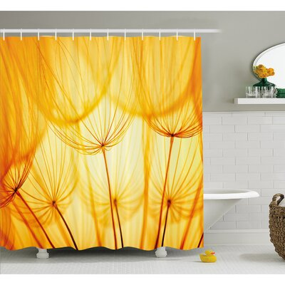 Joy of Dandelion Flower Garden Seeds in Hot Summer Time Themed Artwork Shower Curtain Set Size: 84 H x 69 W
