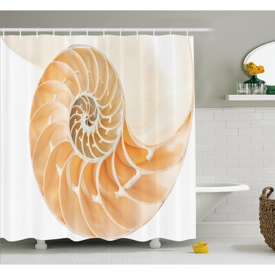 Nautilus Shell Showing the Chambers in Distance Curves Helix Hidden Print Shower Curtain Set Size: 70 H x 69 W