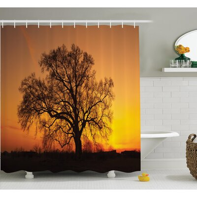 Tree Old Oak in Sunset View Shower Curtain Set Size: 75 H x 69 W
