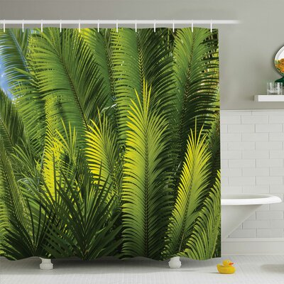 Palm Tree Foliage Tropical Plant Leaves Forest Exotic Natural Beauty Image Shower Curtain Set Size: 84 H x 69 W