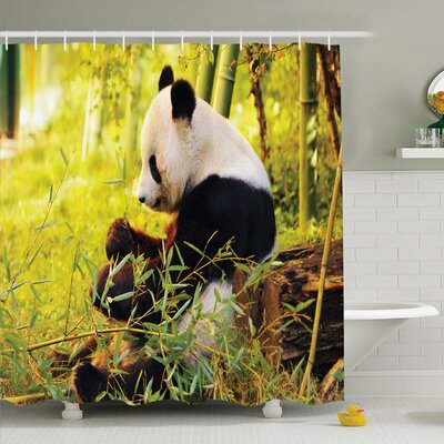 Joellen Panda Sitting in Forest Shower Curtain Set Size: 70 H x 69 W