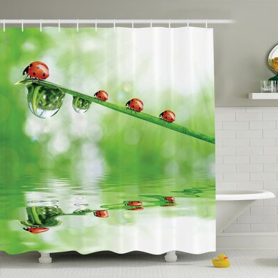Nature Ladybugs on Stream Sun Shower Curtain Set Size: 84 H x 69 W