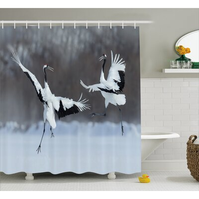 Wildlife Dancing Pair of Red-Crowned Crane with Open Wings in Flight Romantic Bird Print Shower Curtain Set Size: 70 H x 69 W