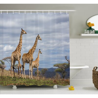 Wildlife African Giraffe Family Looking at Skyline in Savannah Grassland with Shrubs Shower Curtain Set Size: 84 H x 69 W