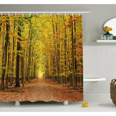 Fall Pathway in Forest with Faded Leaves Dramatic Romantic Season Scene Shower Curtain Set Size: 84 H x 69 W