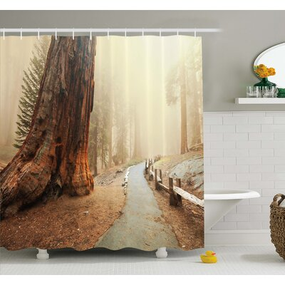 Americana Forest with Giant Tree Body in the Foggy Forest Yosemite Mist Woodland Shower Curtain Set Size: 84 H x 69 W
