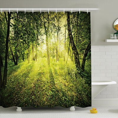 Forest Morning Light in Nature Shower Curtain Set Size: 84 H x 69 W