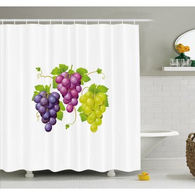 Grapes Three Cluster of Ivy Burgundy Region Blending Fresh Picture Artwork Shower Curtain Set Size: 75 H x 69 W