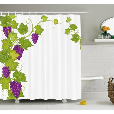 Grapes Latin Brochure Label Italian Town Province Vintage Menu Sign Artwork Shower Curtain Set Size: 70 H x 69 W