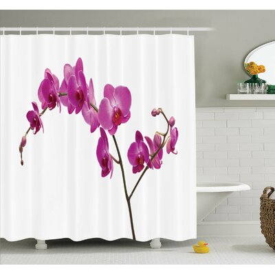 Wild Orchids Petal Florets Branch Romantic Flower Exotic Plant Nature Art Print Shower Curtain Set Size: 75 H x 69 W