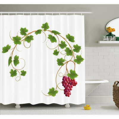 Grapes Curved Ivy Branch Deciduous Woody Wines Seed Clusters Cabernet Kitchen Shower Curtain Set Size: 84 H x 69 W