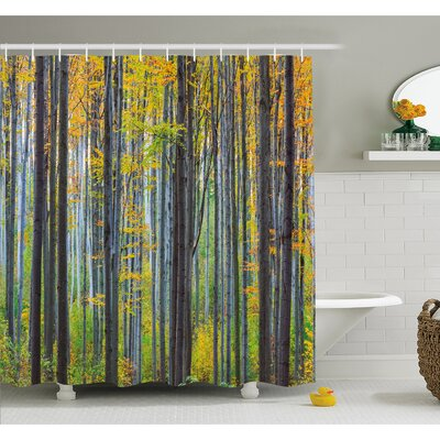 Fall Lush Beech Fall Tree with Tall Bodies Wilderness Rural Countryside Design Shower Curtain Set Size: 75 H x 69 W