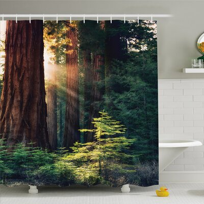 National Parks Home Morning Sunlight in Wilderness Yosemite Sierra Nevada Nature Art Shower Curtain Set Size: 70 H x 69 W
