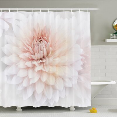 Dahlia Flower Blossom with Distinct Macro Petals Vine Herbs Seeds Natural Wonder Image Shower Curtain Set Size: 75 H x 69 W