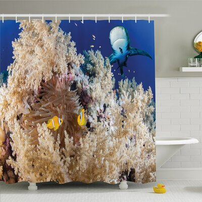 Sea Animal Reef with Clown Fish and Sharks East Egyptian Red Sea Life Scenery Shower Curtain Set Size: 70 H x 69 W
