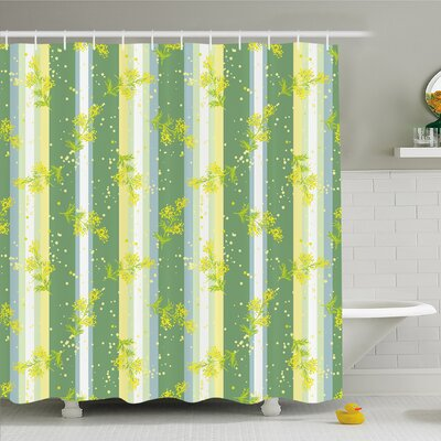 Striped Mimosa Spring Flower Leaves on Striped Back March Blossoms Feminine Decor Shower Curtain Set Size: 70 H x 69 W