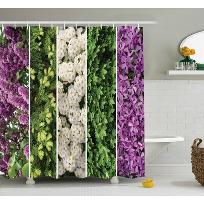 Hancock Collage Mix of Diverse Herbs and Bouquet Flowers Romantic Wedding Concept Shower Curtain Size: 69 W x 70 H