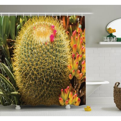 Azhar Cactus Photo of Cactus Plant Flower With Spike Botanic Desert Garden Floral Image Shower Curtain Size: 69 W x 70 H