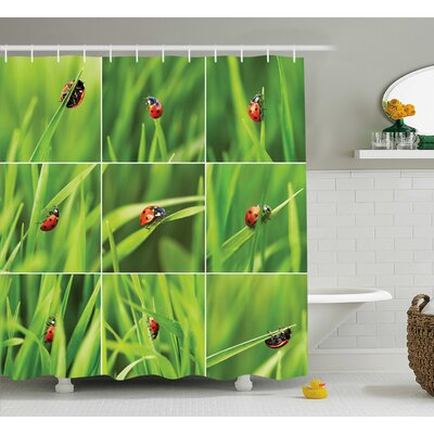 Jeri Ladybug Over Fresh Grass Collection Divided Vibrant Life Lawn Foliage Theme Shower Curtain Size: 69 W x 75 H