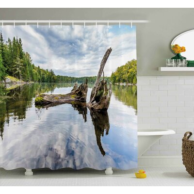 Adele Driftwood Remains of a White Cedar Tree Trunk Shower Curtain Size: 69 W x 70 H