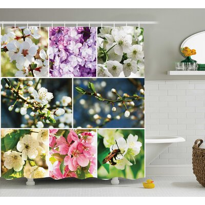 Mosley Spring Collage With Twiggy Cherry Blossom Sakura Trees and Jasmine Branches Shower Curtain Size: 69