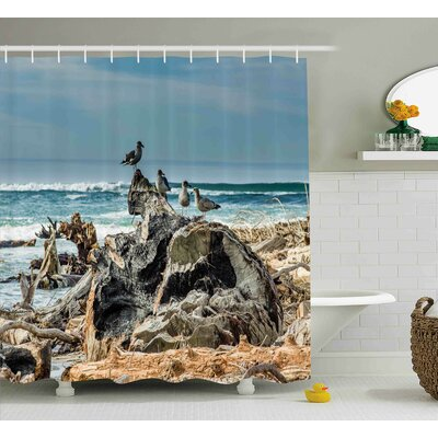 Velma a Raft of Driftwood on The Shore Seagulls Wavy Sea and The Sky Digital Image Shower Curtain Size: 69 W x 70 H