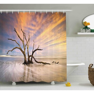 Mildred Seascape Theme Dead Tree Driftwood Shower Curtain Size: 69 W x 75 H