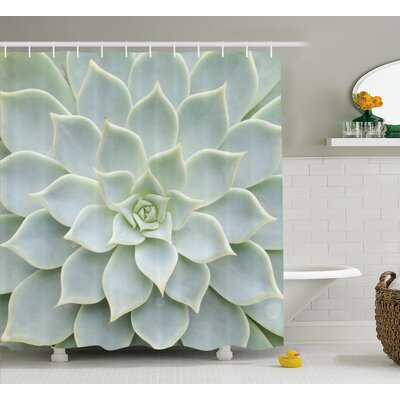 Greenock Cactus Plant Flower Zoomed Photo Image Desert Mexican Hot Natural Plant Artwork Shower Curtain Size: 69 W x 70 H