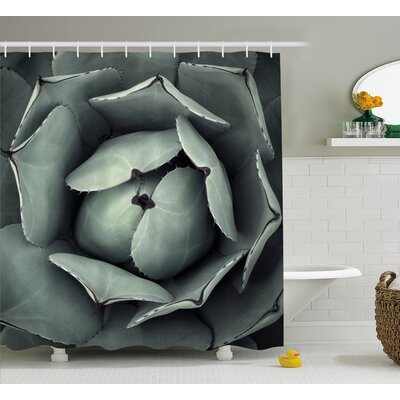 Nathaniel Natural Botanic Flower Plant Image of Blossom Openning Cactus Floral Modern Art Shower Curtain Size: 69