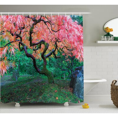Lopez Japanese Aged Red Leaf Maple With Moss Asian Garden Scenery Autumn Grass Shower Curtain Size: 69 W x 70 H
