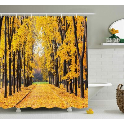 Vandemere Nature Autumn Fall Trees Falls Dried Leaves Scenery on Road Path Photo Artwork Shower Curtain Size: 69 W x 70 H