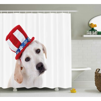 4th of July Ornate Independence Day Celebration With Fireworks Balls Vibrant Image Shower Curtain Size: 69 W x 70 H