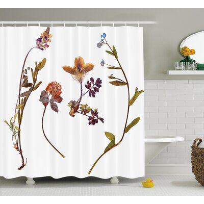 Blake Book Dried Cute Flowers Lilacs Daisies Tulips Leaves Garden Buds Art Print Shower Curtain Size: 69 W x 70 H