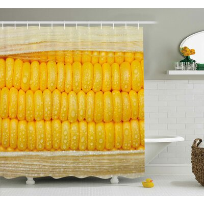 Erin Health Corn Cob Stem With Raindrops Water Marks Mexican Vegetable Photo Artwork Image Shower Curtain Size: 69 W x 70 H