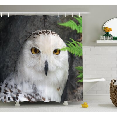 Wildomar Wizard Pattern White Owl Themed Animal Green Leaves Amber Eyes Gift Witchcraft Print Shower Curtain Size: 69 W x 70 H
