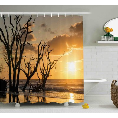Abigail Driftwood Sea Theme Sunrise At Beach Trees Without Leaves and Cloudy Sky Digital Image Shower Curtain Size: 69 W x 70 H