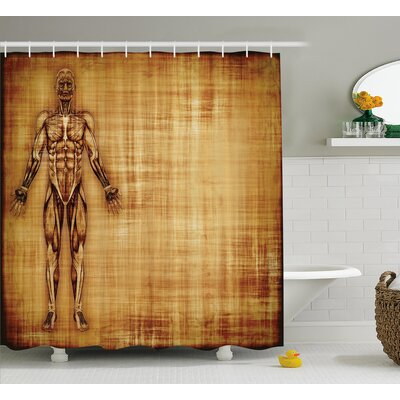 Human Anatomy Grunge Old Parchment Effect Skeleton Muscles of Human Body Retro Art Print Shower Curtain Size: 69 W x 70 H