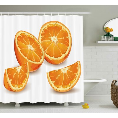 Kawakami Nature Fresh Nature Health Citrus Orange Mediterranean Energetic Fruit Artwork Print Shower Curtain Size: 69 W x 70 H