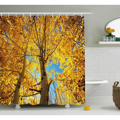 Nathan Nature Autumn Fall Season Trees Forest Leaves Branches Sunbeams Art Photo Shower Curtain Size: 69 W x 70 H
