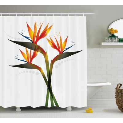 Greve Strand Flower Ombre Colored Botanic Tropical Garden Plant With Abstract Dots Artwork Shower Curtain Size: 69 W x 70 H