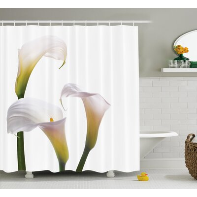Bowdoin Lilac Bouquet Pure Calming Relaxing Modern Floral Design Photo Image Shower Curtain Size: 69 W x 75 H