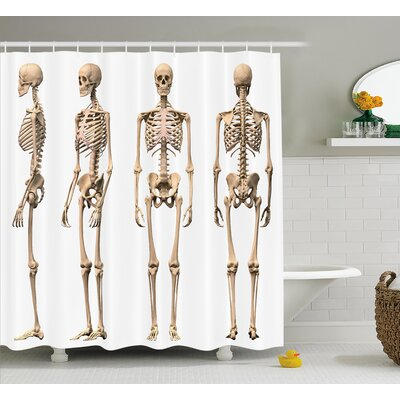 Human Anatomy Man Male Human Skeleton Skull Different Perspectives Medical Humor Illustration Shower Curtain Size: 69 W x 70 H