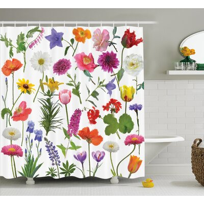 Mckinney Types of Flowers Colored Roses Tulips Daisies Hydrangeas Lilacs Artwork Print Shower Curtain Size: 69 W x 70 H