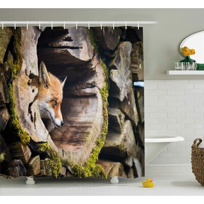 Burston Animal True Fox Vulpes Inside Wood Log Holes Exotic Furry Creature Wildlife Creature Design Shower Curtain Size: 69 W x 70 H