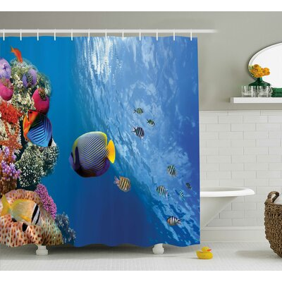 Bettye Tropical Emperor Long Living Angelfish Shower Curtain Size: 69 W x 75 H