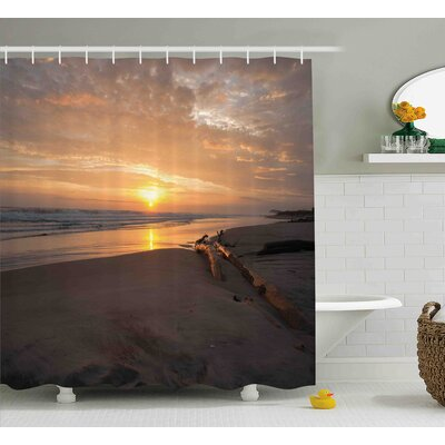 Cathleen Driftwood Golden Sun Rises Over a Distant Horizon Sandy Beach and Driftwood Shower Curtain Size: 69 W x 70 H