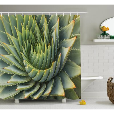 Kaden Cactus Botanic Spikey Wild Nature Inspired Western Dessert Plant Flower Artwork Image Shower Curtain Size: 69 W x 70 H