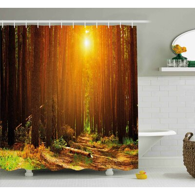 Wilksboro Landscape Sunset Dawn Sun Rise Beams Shower Curtain Size: 69 W x 70 H