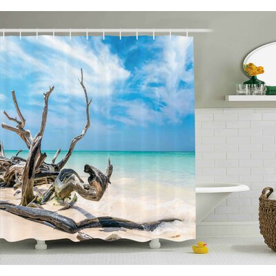 Lara Driftwood Seascape Theme Branches on Sandy Beach of Cuba and The Sky Image Shower Curtain Size: 69 W x 70 H