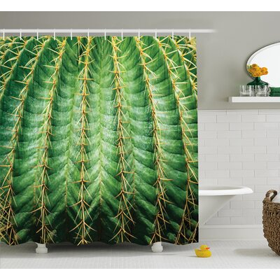Ciara Photo of Cactus With Spikes Plant Flower Fruit From Close Zoom Shoot With Spikes Shower Curtain Size: 69 W x 75 H